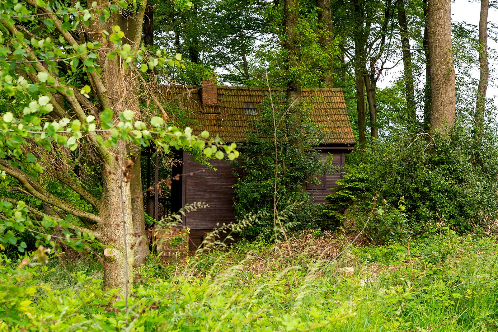 Cabin in the Woods in Engelskirchen