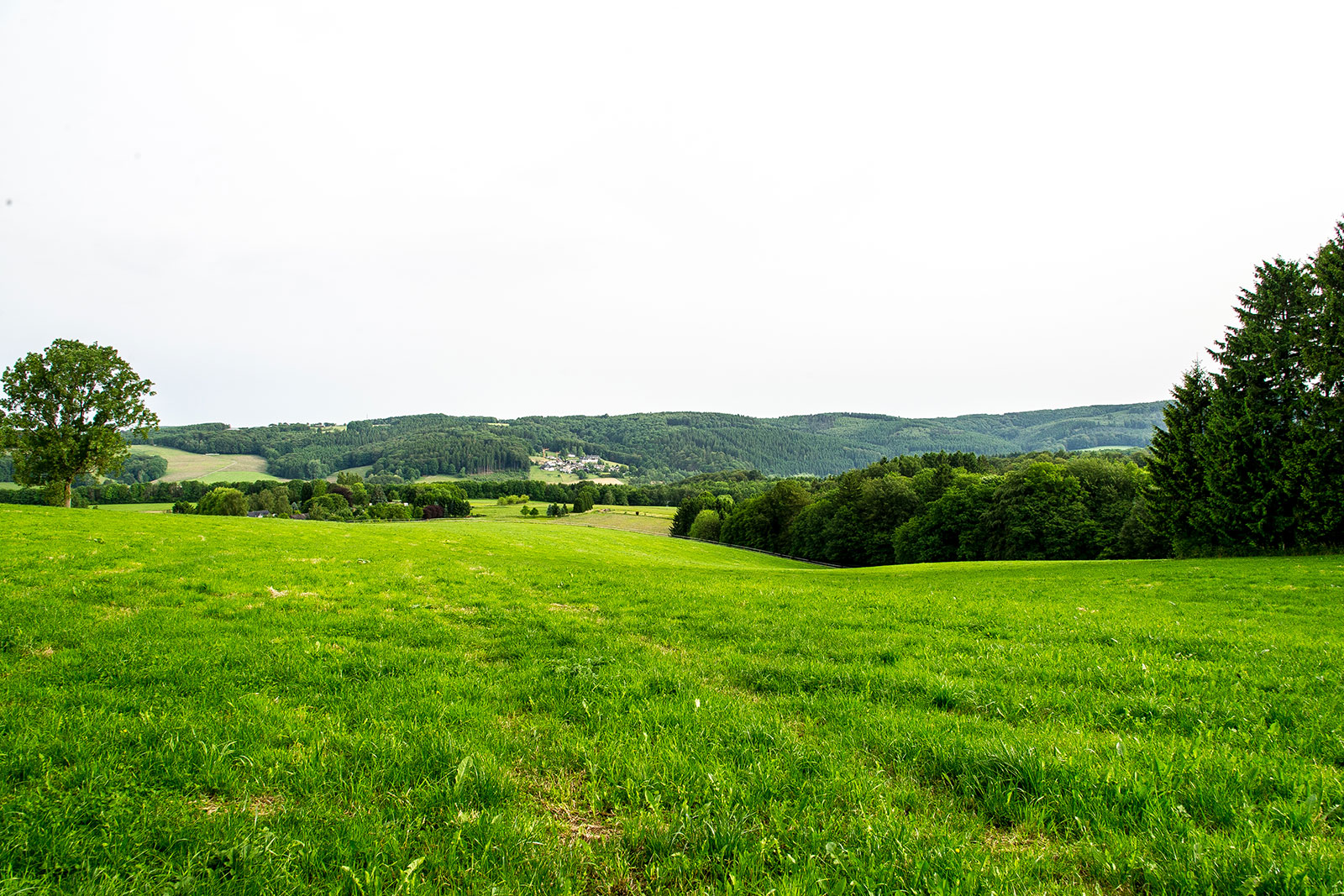 View of meadows and forests at castle Ehreshoven in germany